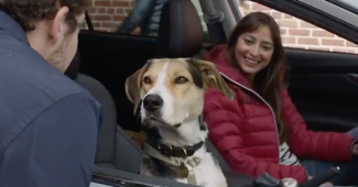 Subaru commercial dog third wheel on a date