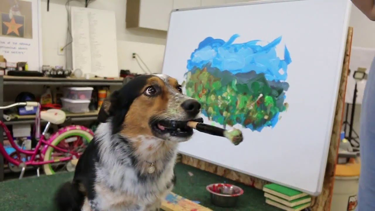 video of a dog painting on a canvas