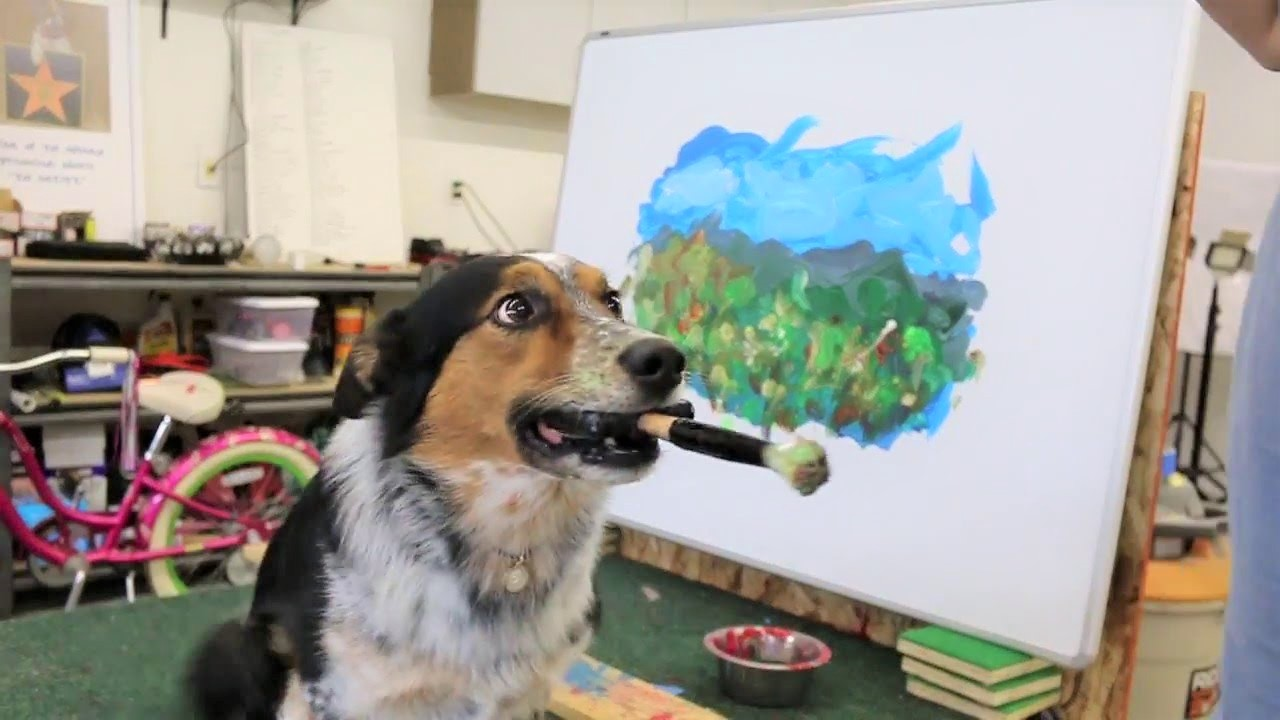 video dog painting with a brush
